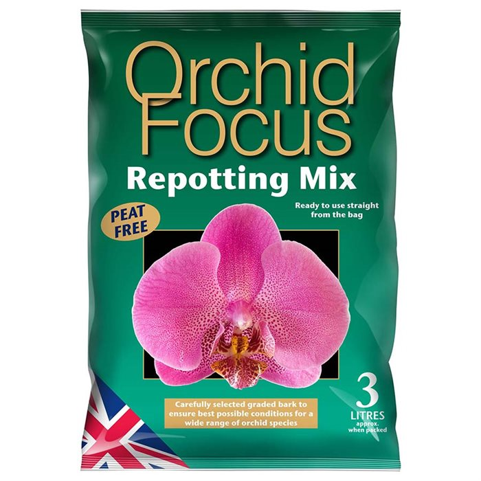 Orchid Focus Mix Growth Tech
