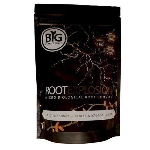 Root Explosion Big Plant Science